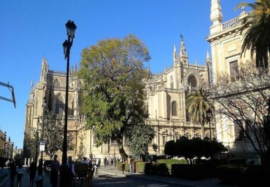Esencias de Sevilla - 2