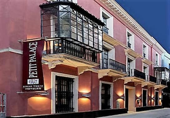 Petit Palace Marqués Santa Ana  ...
